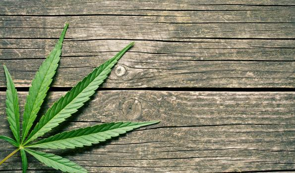 cannabis woodtable